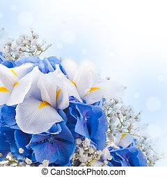 blumen, in, a, blumengebinde, blaues, hydrangeas, und, weißes, iris