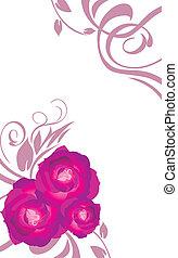 blumen-, karte, mit, lila, rosen
