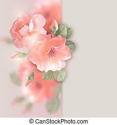 blumen, karte, rosen