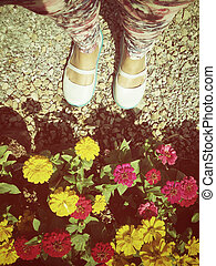 blumen, schuhe, gänseblumen