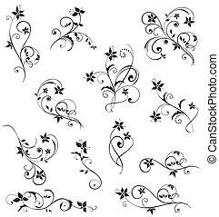 blumen-, schwarz, design