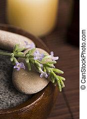 blumen, wesentlich, oel, Lavendel