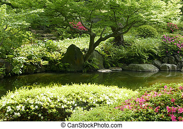 blumengarten, zen, japanisches , baum, teich, pflanze