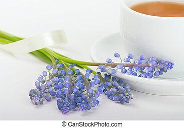 blumengebinde, muscari, mit, morgen, tee