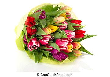 blumengebinde, tulpen, bunte