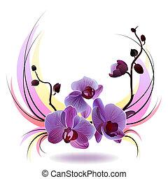 blumengebinde, vektor, grüßen karte, orchideen
