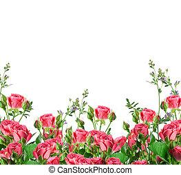 blumengebinde, von, delikat, rosen, blumen-, hintergrund