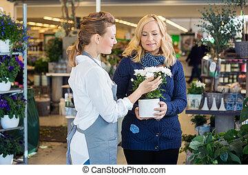 blumenhändler, assistieren, weibliche , kunde, in, kaufen, blume, betriebe