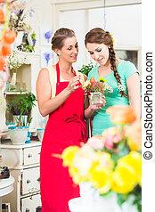 blumenhändler, frau, und, kunde, in, floristik