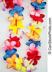 blumenkette, gefärbt, hawaii