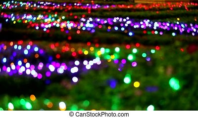 blur abstract rainbow color light decoration on tree in the night garden