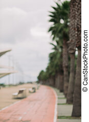 blur background of bicycle path between green palms