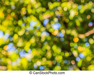 Blur image of tree