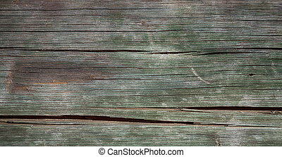 abstract wood closeup like background texture