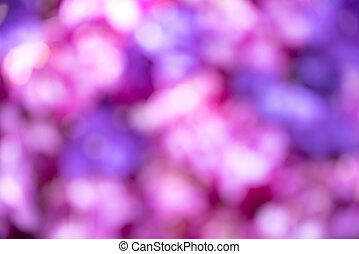 Blur of pink orchid background