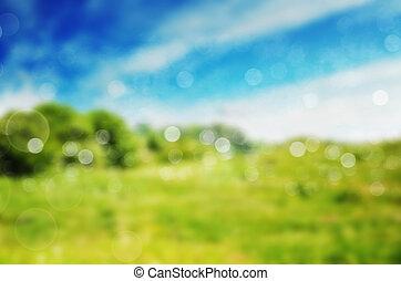 blured  nature background