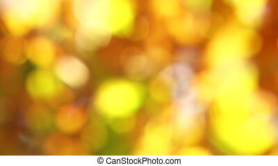 Blurred Autumn Leaves Moved By Wind
