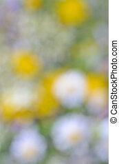 Blurred background 5