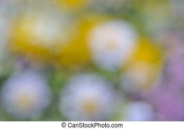 Blurred background 6