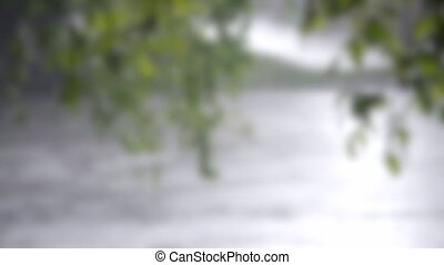 Blurred background. In the foreground is a branch of a tree with green leaves. On the background on the street there is a heavy rain downpour, a strong wind is blowing, on asphalt puddles with bubbles