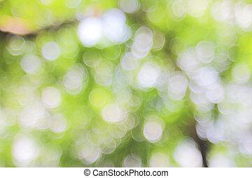 blurred background.