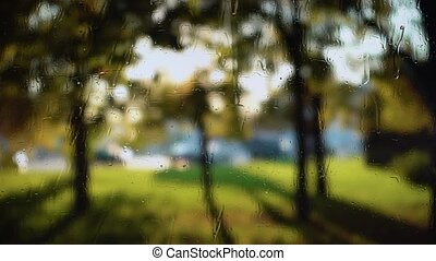 Blurred background with fresh green leaves waving in wind behind rainy window