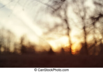 blurred background with park in early spring sunset