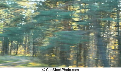 blurred car trip in sunny autumn