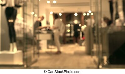 Blurred female customer and sales assistant in the store in...