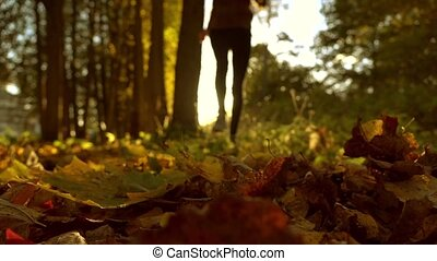 Blurred female running on fallen autumn leaves in sunny forest. Blazing sun. Super slow motion background bokeh shot