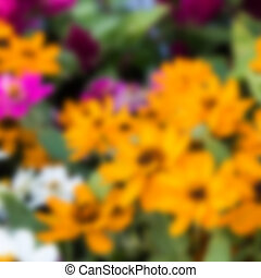 Blurred flower background.