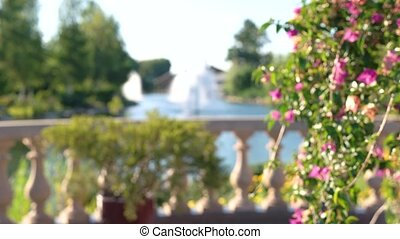 Blurred flowers and fountains. Summer nature background.