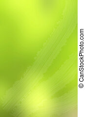 blurred green light background texture
