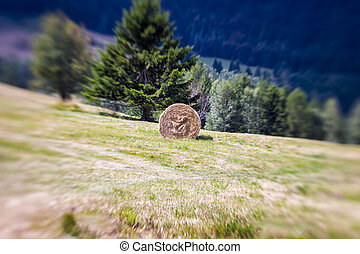 Blurred Mountain Sheaf. Lensbaby Shot