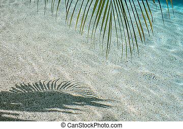 Blurred silhouette of palm leaves on water. Abstract background blue color. Soft focus and motion blur. Copy space.