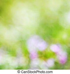 blurred spring flowers background; de-focused