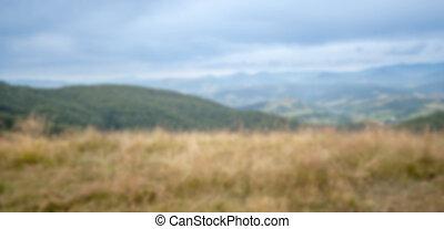 blurred summer landscape in the Ukrainian Carpathians