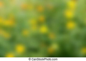 blurry φόντο