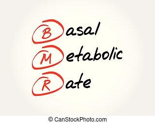 bmr, metabolic, siglas, -, basal, tasa