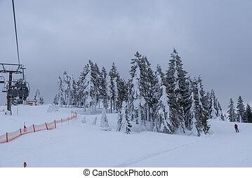 boêmio, recurso, -, esqui, floresta, hochficht