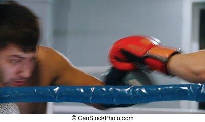 boîte anneau, gants, formation, boxeurs, -, hommes