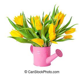 boîte, arrosage, bouquet, jaune, tulipes
