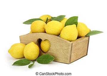 boîte bois, entiers, citrons