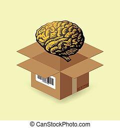 boîte, cerveau, papier
