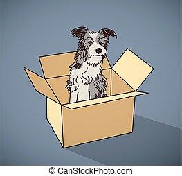 boîte, couleur, chien, triste, rue, sdf, seul