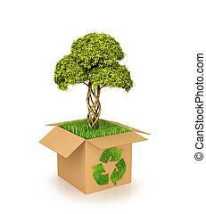 boîte, grows., concept, nature, arbre, illustration, green., carton, recycler, herbe, conservation., 3d