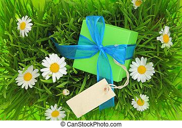 boîte, herbeux, etiquette don, fond, vide
