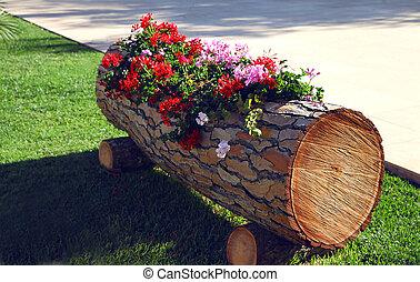 boîte, jardinage, concept, décoratif, bois, -, décoration, rue, fleurs