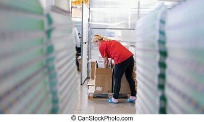 boîte, met, ouvrier, papier, magazines, imprimé, femme, par, piles