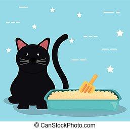 boîte, mignon, peu, chat sable